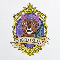画像3: FRAME CAT HOODIE (OFF WHITE) (3)
